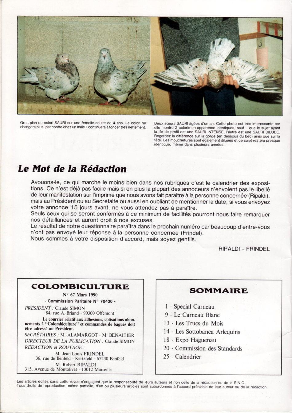 Article les sottobanca arlequins Colombiculture n°67 mars 1990 Par Jean Clavier
